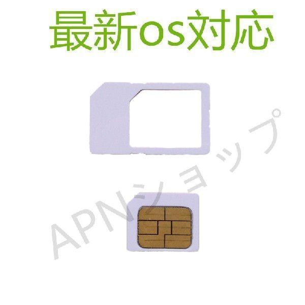 au iPad2 iPad3 iPad4 Wi-Fi+Cellular AU専用 micro simカード アクティベートカードactivationアクティベーション【ゆうパケット送料無料】|apnshop|02
