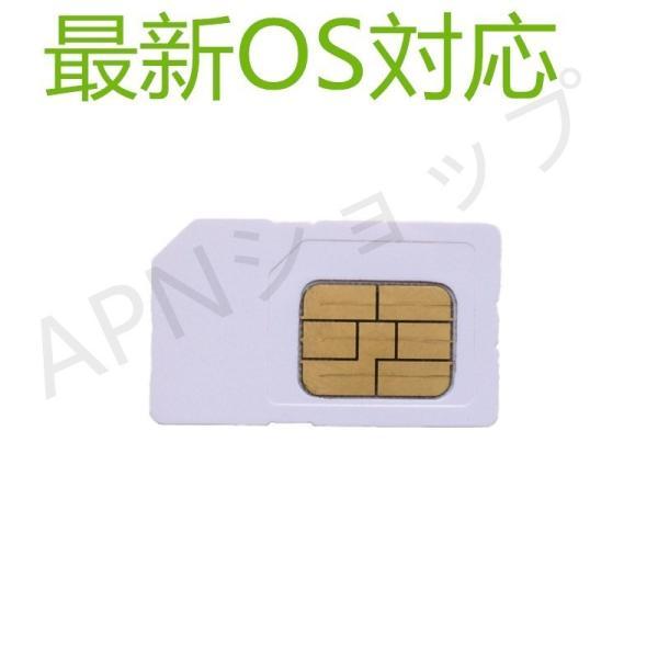 au iPad2 iPad3 iPad4 Wi-Fi+Cellular AU専用 micro simカード アクティベートカードactivationアクティベーション【ゆうパケット送料無料】|apnshop|03