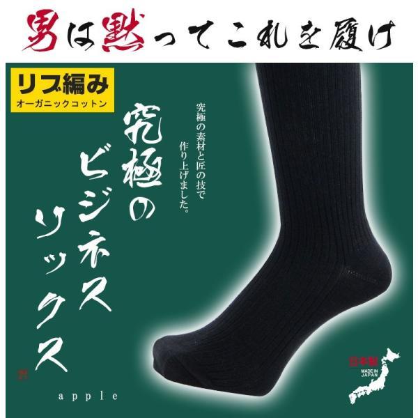 靴下 ビジネスソックス メンズ 臭わない リブ編み 夏用 ソックス くつ下 socks RSL apple1013 02