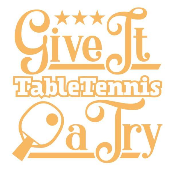 卓球 ドライシルキータッチ ロングスリーブ Tシャツ ウェア 長袖 練習着 チーム クラブ 全8色 T802 送料無料 5089 apricot-uns 02
