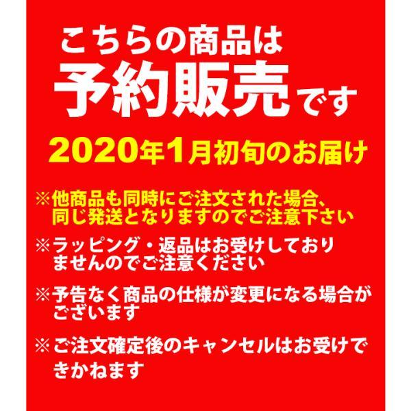 プーマ PUMA 2020年 新春 福袋 メンズウェア 6点セット/FK20-puma-921102【ギフト不可】 apworld 05