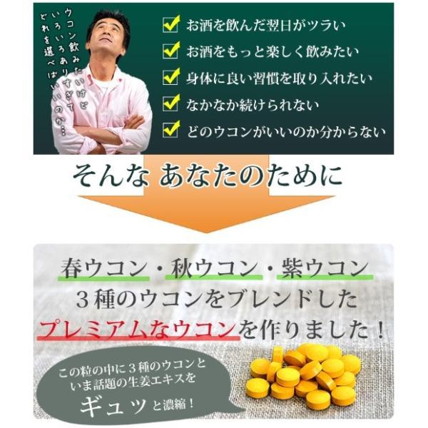 送料無料 ウコン 二日酔い 金のウコン粒 30包 健康 セール沖縄ウコン堂 ポイント消化 クルクミン|aqua-green|02