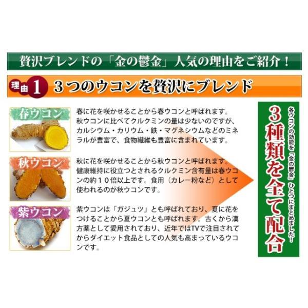 送料無料 ウコン 二日酔い 金のウコン粒 30包 健康 セール沖縄ウコン堂 ポイント消化 クルクミン|aqua-green|03