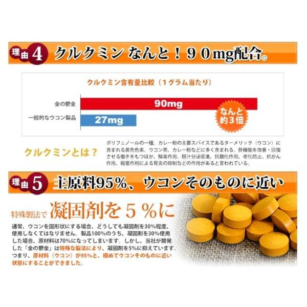 送料無料 ウコン 二日酔い 金のウコン粒 30包 健康 セール沖縄ウコン堂 ポイント消化 クルクミン|aqua-green|06
