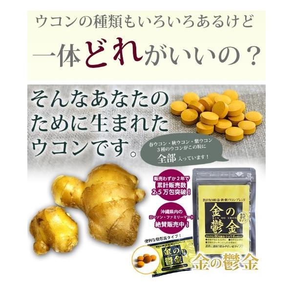 送料無料 ウコン 二日酔い 金のウコン粒 30包 健康 セール沖縄ウコン堂 ポイント消化 クルクミン|aqua-green|07