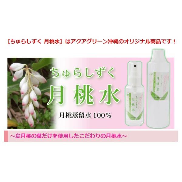 送料無料 月桃水 300ml 化粧水 美容 送料無料 沖縄コスメ お肌のケア|aqua-green|02