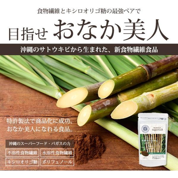 料理 ご飯 混ぜるだけ 発酵サトウキビファイバー 送料無料 食物繊維 沖縄ウコン堂 セール ポイント消化 |aqua-green|03