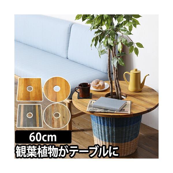 プランツテーブル 60cm Plants Table 大 観葉植物 ウッド ミニテーブル
