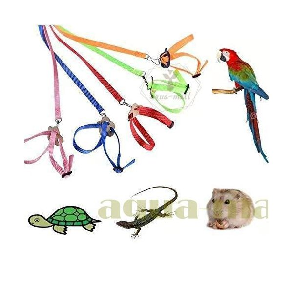 |鳥用リード 鳥ハーネス トラクションロープ インコ/鳥/オカメインコ/ハムスター/カメレオン/トカ…