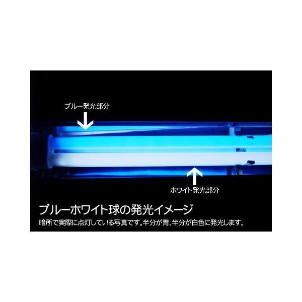 アクシーファイン7W ブルーホワイト aquana 03