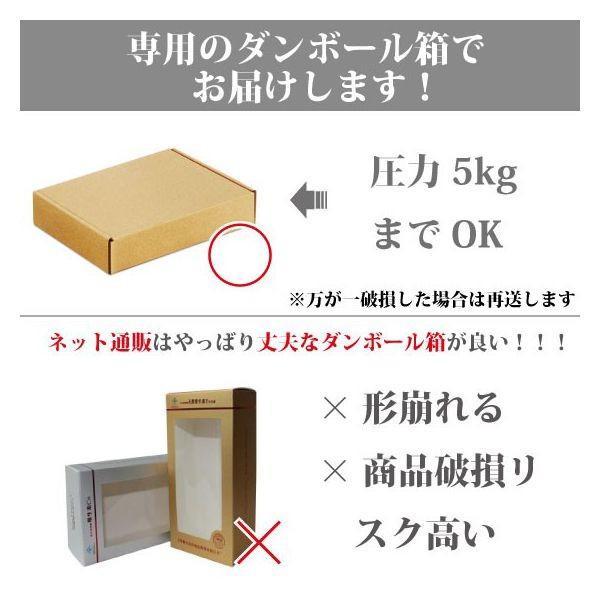 ワイヤレスイヤホン Bluetooth イヤホン 最新版 ブルートゥース s530 ヘッドセット 軽量 ヘッドホン 隠し型 オープン記念|arakawa5656|13
