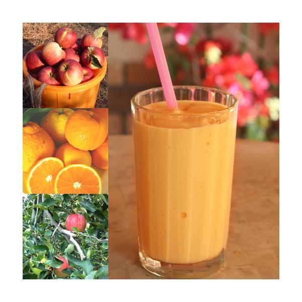 【冷凍便】和歌山産「みかん&りんごスムージー」農家さんから直接分けてもらうくだもの(みかん+オレンジ+りんご+レモン+みかんの花の蜂蜜)