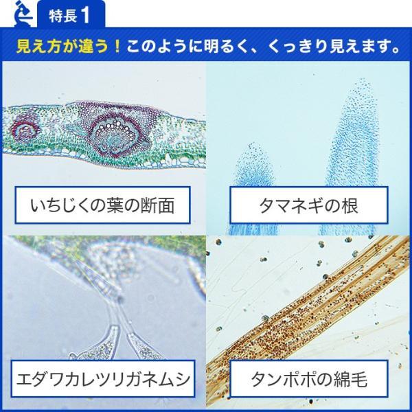 ハイクラス 顕微鏡セット 倍率1000倍  マイクロスコープ 800‐Ultimate 日本語説明書 1年間保証付き