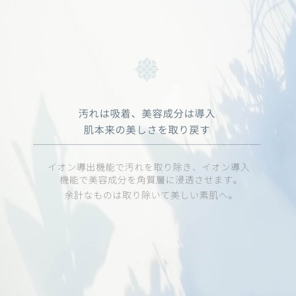 \ポイント3倍/Areti 楽天1位 イオン導入 導出 美顔器 クラリティ リンクル(L)b1026|areti|03