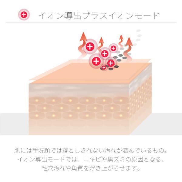 \ポイント3倍/Areti 楽天1位 イオン導入 導出 美顔器 クラリティ リンクル(L)b1026|areti|06