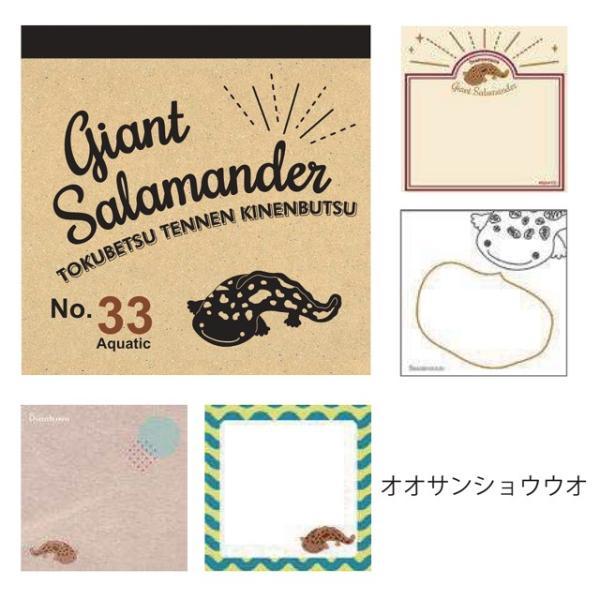 アクアチック スクエアメモ オオサンショウウオ / 水生生物 ワールド商事 四角い メモ帳 日本製