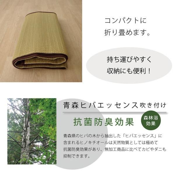 い草マット | い草ラグカーペット 無地 『DX本草』 約100×140cm|arinkurin|05