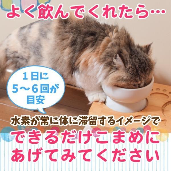 ペット用水素水 ミネラルゼロ 犬 猫  甦り水 お試し ペットの水素水 220ml 10本 送料無料 アルミ ボトル|arkhe|09