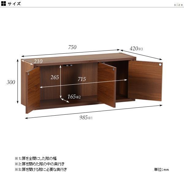 ウォールシェルフ 戸棚 吊戸棚 キッチン 壁面ラック ウォールボックス 壁掛け 棚 扉付き 収納 石膏ボード|arne-sofa|03