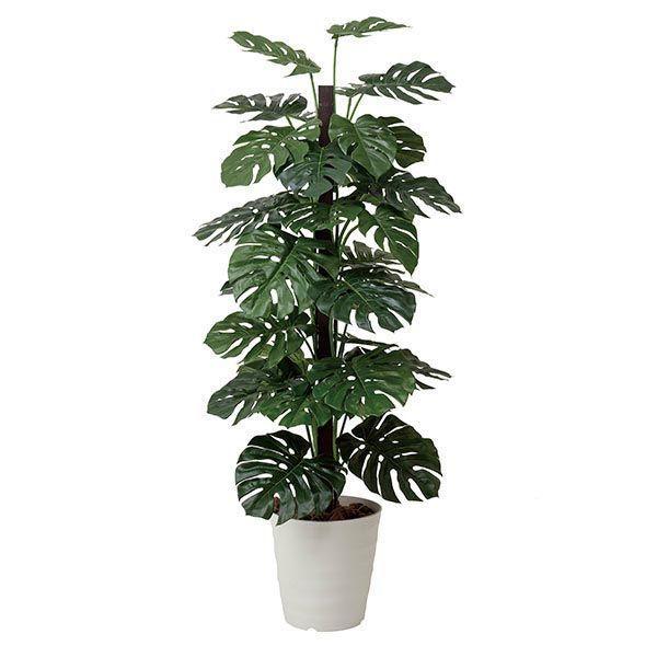光触媒 観葉植物 人工観葉植物 インテリア モンステラ 180cm 光触媒観葉植物                                                                                                                             人気の光触媒 人工観葉植物