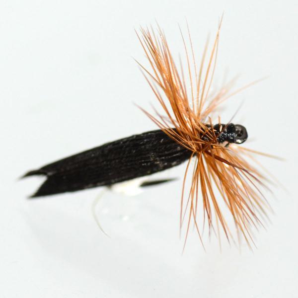 ドライフライ(dry fly) キングリバーカディス 激安 フライフィッシング 渓流 完成フライ 管理釣り場