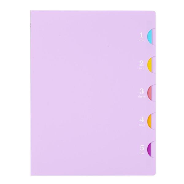 プラスチックバインダー ファイブチャート ライト(B type) B5(26穴)背幅20mm F116 【maruman/マルマン】[DM便不可]|artandpaperm|04