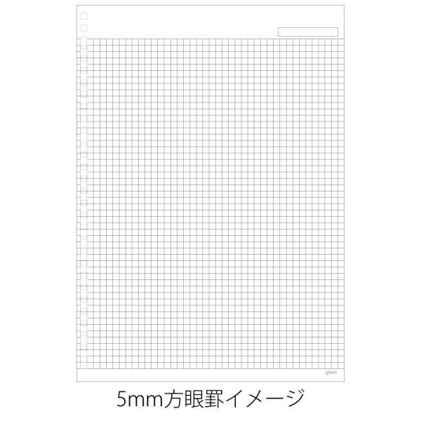 マルマン ルーズリーフ ジウリス A5 20穴 方眼罫 HL307B (DM便1 旧メール便) maruman|artandpaperm|03