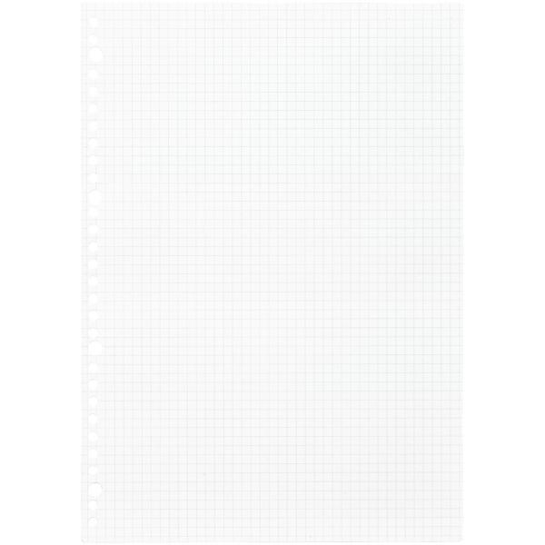 ルーズリーフ 書きやすいルーズリーフ A4 30穴 筆記用紙80g/m2 5mm方眼罫 100枚 L1107H マルマン (DM便 ネコポス1点まで)|artandpaperm|02