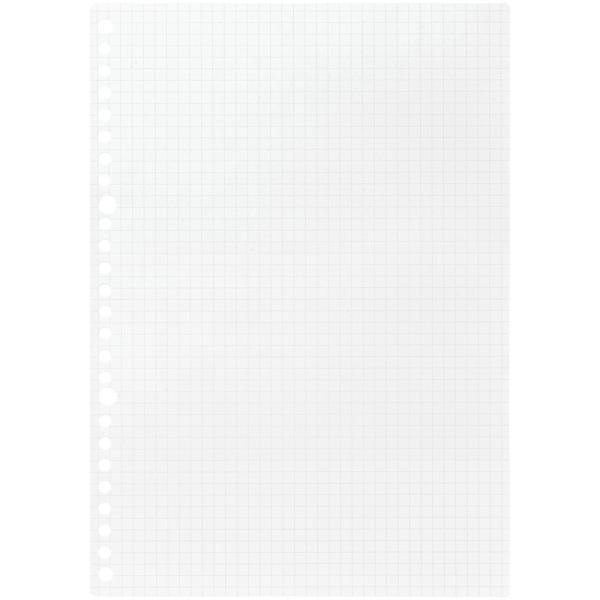 ルーズリーフ 書きやすいルーズリーフ B5 26穴 筆記用紙80g/m2 5mm方眼罫 100枚 L1207H マルマン (DM便 ネコポス2点まで)|artandpaperm|02