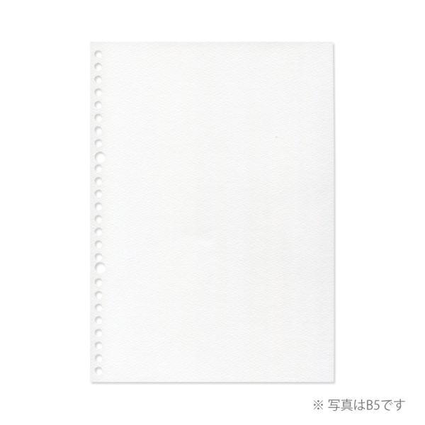 ルーズリーフ 画用紙リーフ 無地 B5 26穴 並口 中性紙 L1235 マルマン (DM便 ネコポス2点まで)|artandpaperm|02