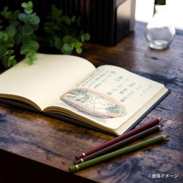 マルマン ノート グリフィー B6変型 アンチークレイド紙 N1484[DM便2](旧メール便)|artandpaperm|07