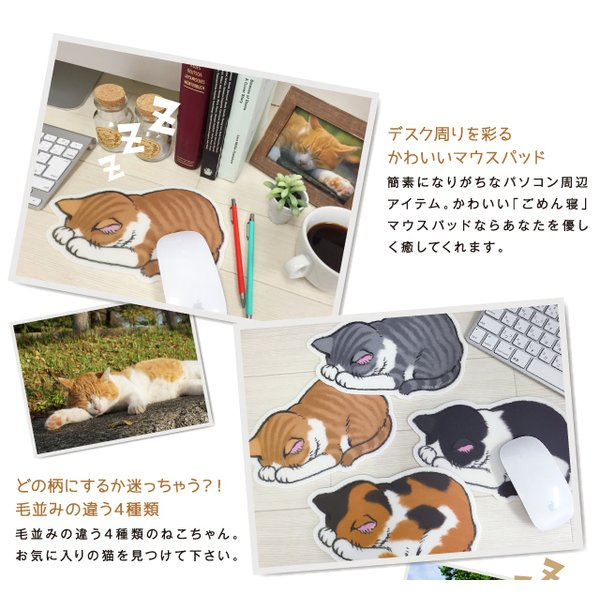 ごめん寝 (ネコ) マウスパッド /m/|artemis-webshop-2|03