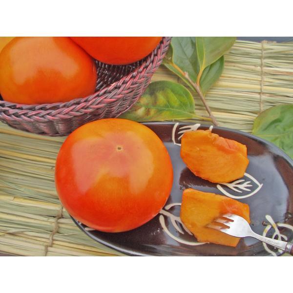 富有柿(一般品質・優品)約6Kg 22~28個入11月下旬頃発送
