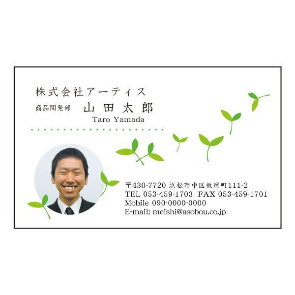 顔写真入り名刺 カラー印刷 0909 50枚 名刺デザイン