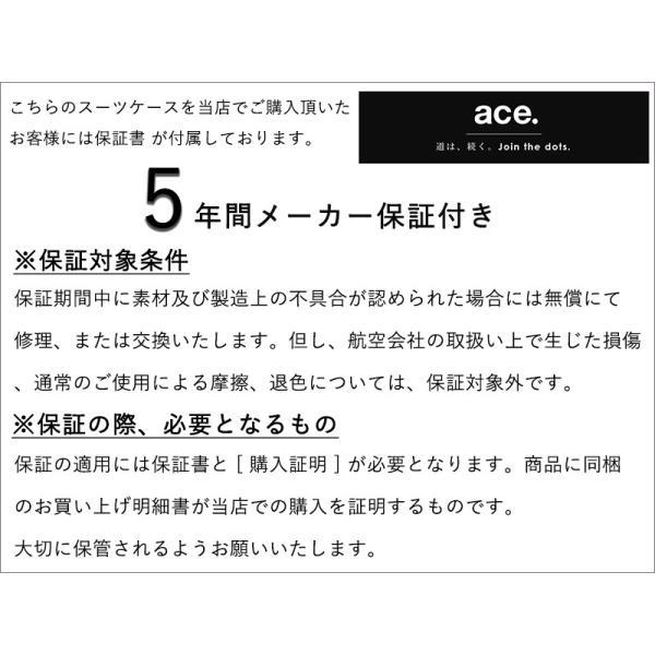エース スーツケース Lサイズ パリセイドZ 65cm 05585 arukikata-travel 09