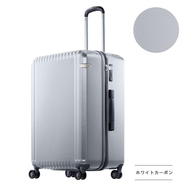 エース スーツケース Lサイズ パリセイドZ 65cm 05585 arukikata-travel 13