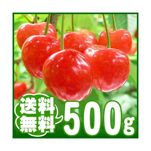 さくらんぼ 500g|arumama