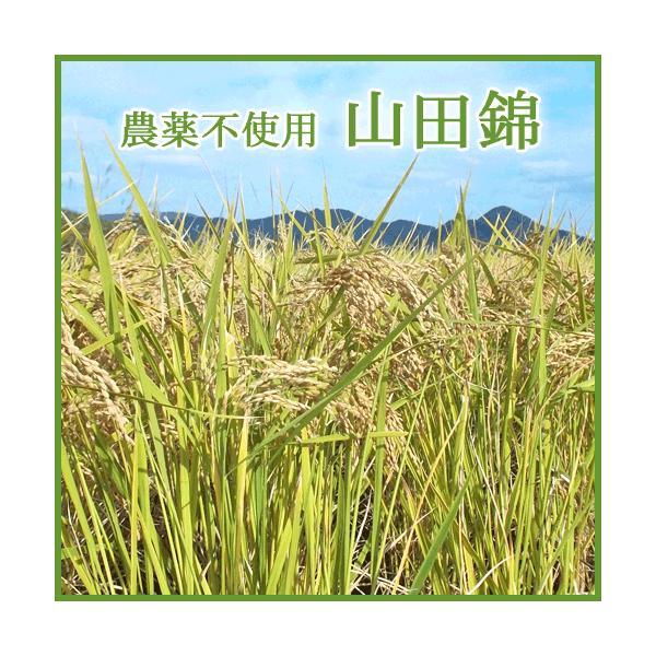 どぶろく ほうすけらっぱ 竹田特産 500ml|arumama|04