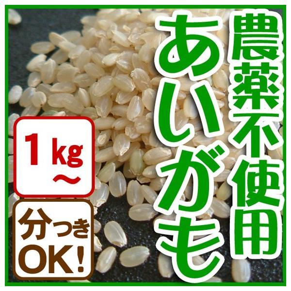 令和元年産 玄米(精米無)農薬不使用 白米 あいがも農法 お米 1kg〜当日精米|arumama
