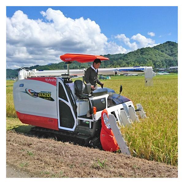 令和元年産 玄米(精米無)農薬不使用 白米 あいがも農法 お米 1kg〜当日精米|arumama|06