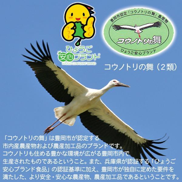 平成30年産 送料無料 お米10kg 玄米 白米 コウノトリ米|arumama|04