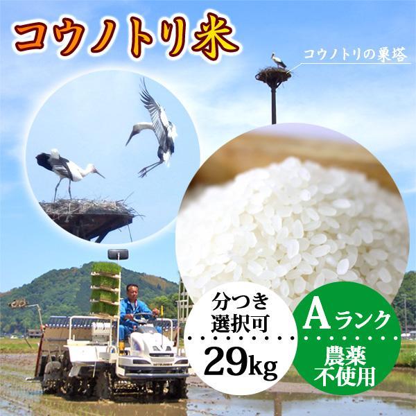 新米予約 玄米(精米無)農薬不使用 29kg 白米 こうのとり米 令和3年産 有機肥料 コシヒカリ 送料無料 当日精米