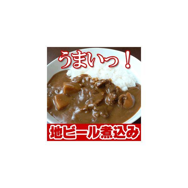 お中元 ビールギフト 地ビール&カレー お試しセット 城崎ビール 【4本+4人前】|arumama|02