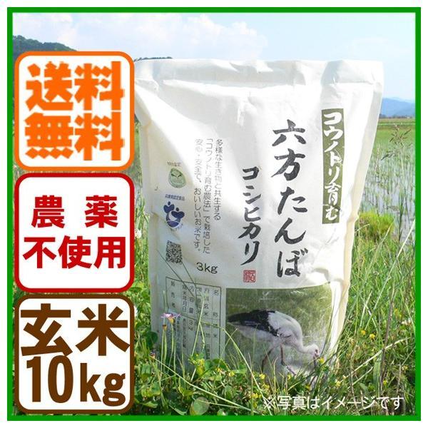 令和元年産 玄米 農薬不使用 コシヒカリ10kg こうのとり米 送料無料 兵庫県産 arumama