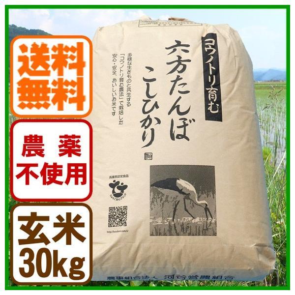 新米 令和元年産 玄米 農薬不使用 コシヒカリ30kg こうのとり米 送料無料 兵庫県産|arumama