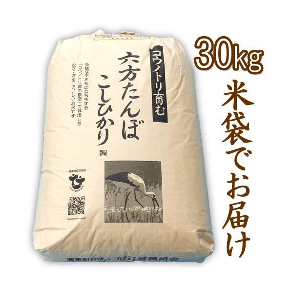 新米 令和元年産 玄米 農薬不使用 コシヒカリ30kg こうのとり米 送料無料 兵庫県産|arumama|02
