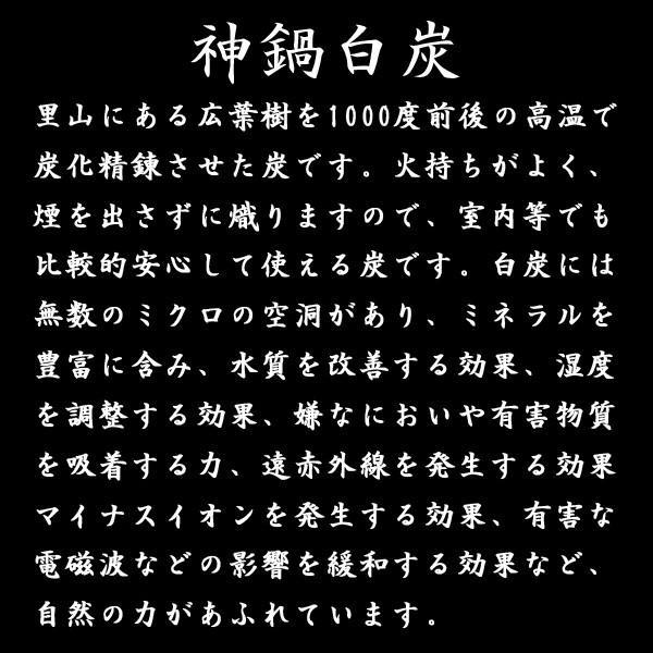 炭パウダー チャコール 食用 クレンズ 微粉炭 ダイエット 50g 10ミクロン 着色料 神鍋BLACK 兵庫県産|arumama|04