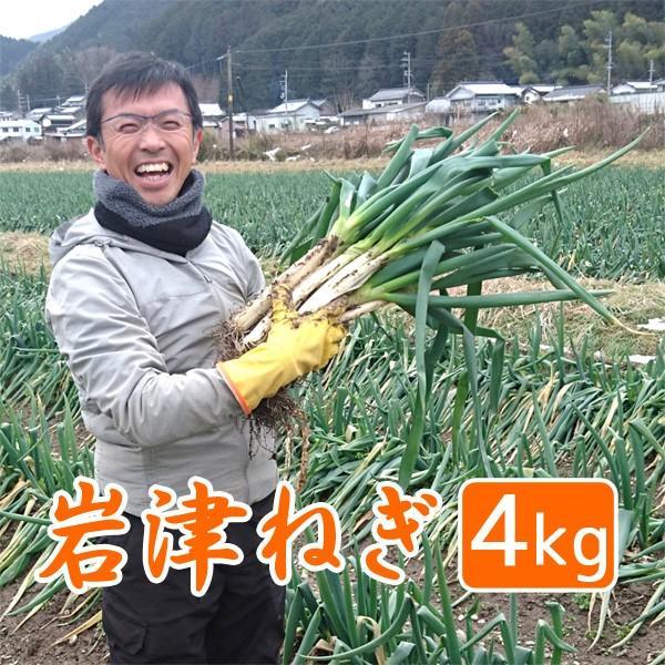岩津ねぎ 送料無料 朝来特産 訳あり 4kg|arumama