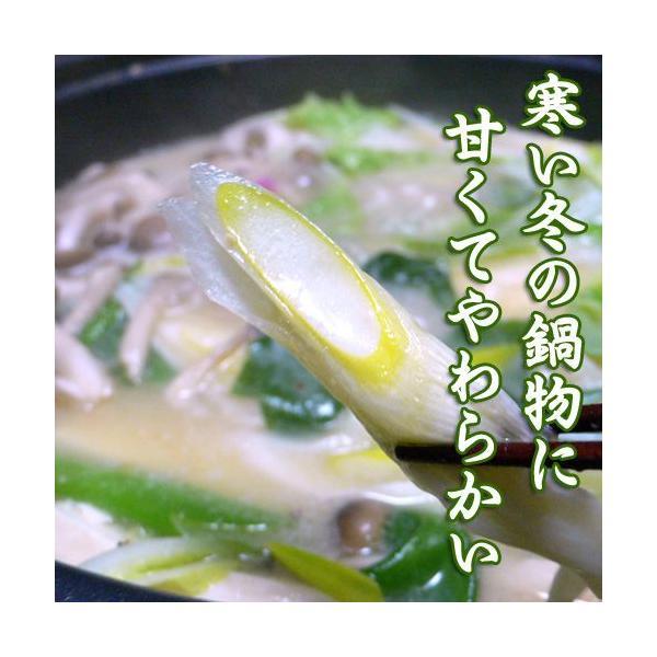 岩津ねぎ 送料無料 朝来特産 訳あり 4kg|arumama|05