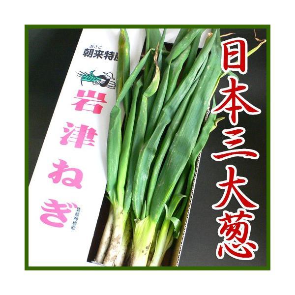 岩津ねぎ 送料無料 朝来特産 訳あり 4kg|arumama|06